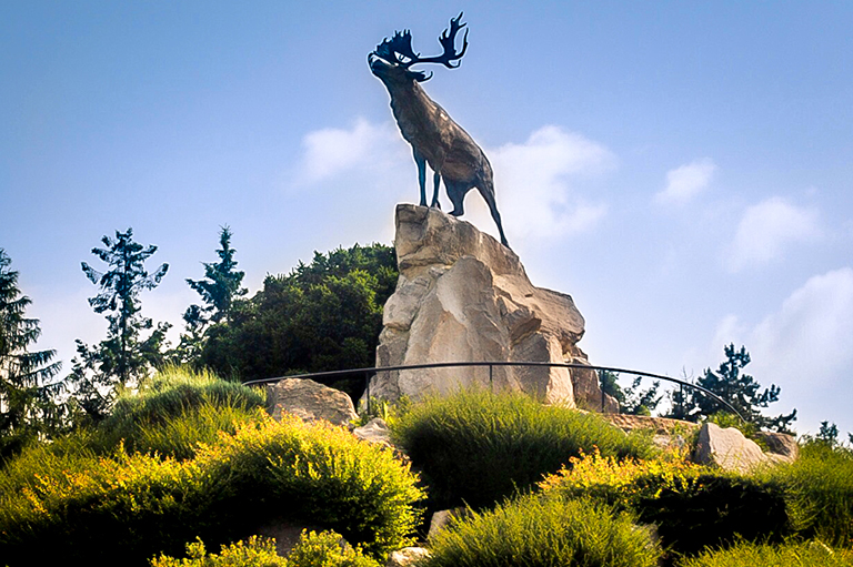 This image shows one of six caribou monuments honouring the Newfoundlanders who fought in the First World War.