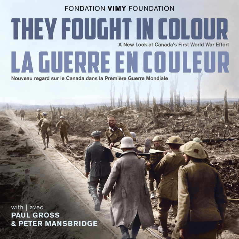 Cover of They Fought in Colour