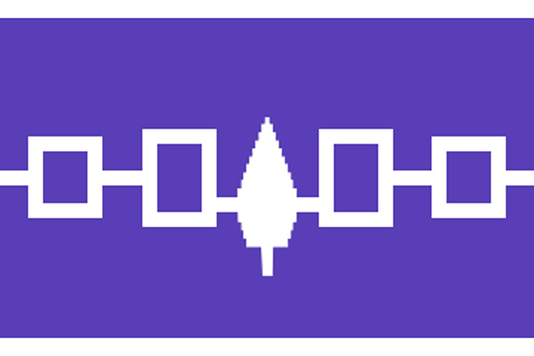Flag of the Iroquois confederacy