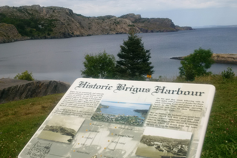 This image shows the Newfoundland coast line with rocks, trees and grass and a information sign.